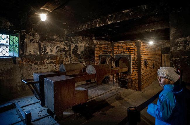 Auschwitz 8186 GEA